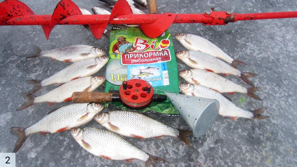 рыбалка на ладоге в выходные