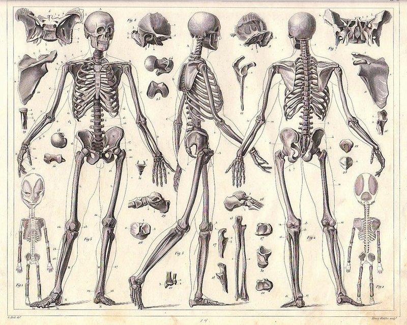 Воспалительные заболевания суставов — это заболевания лимфатической системы