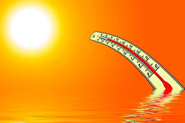 Плохо переносите жару? Тогда эти советы для вас