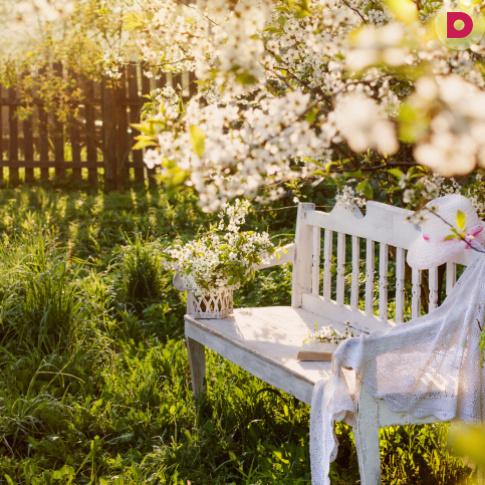 Идеальный сад: как правильно планировать?
