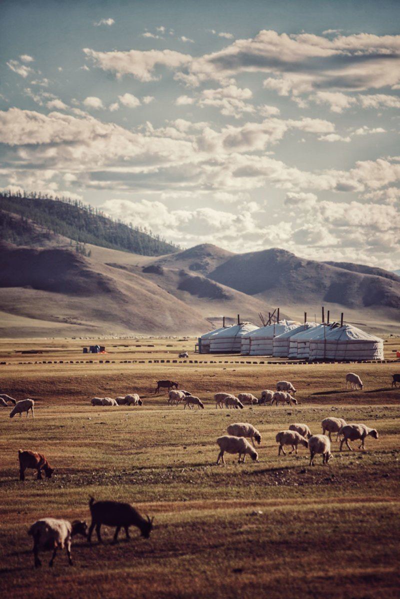 Монголия монголия, мотоцикл, мотоцикл с коляской, мотоцикл урал, путешественники, путешествие, средняя азия, туризм