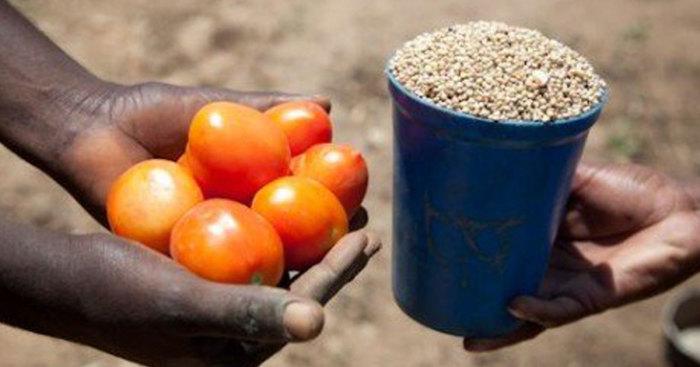 Прямой обмен позволял древним людям торговать с другими племенами./Фото: pp.userapi.com