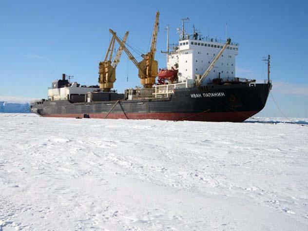 Архангельские водолазы  в Антарктиде  спасали исследовательское судно