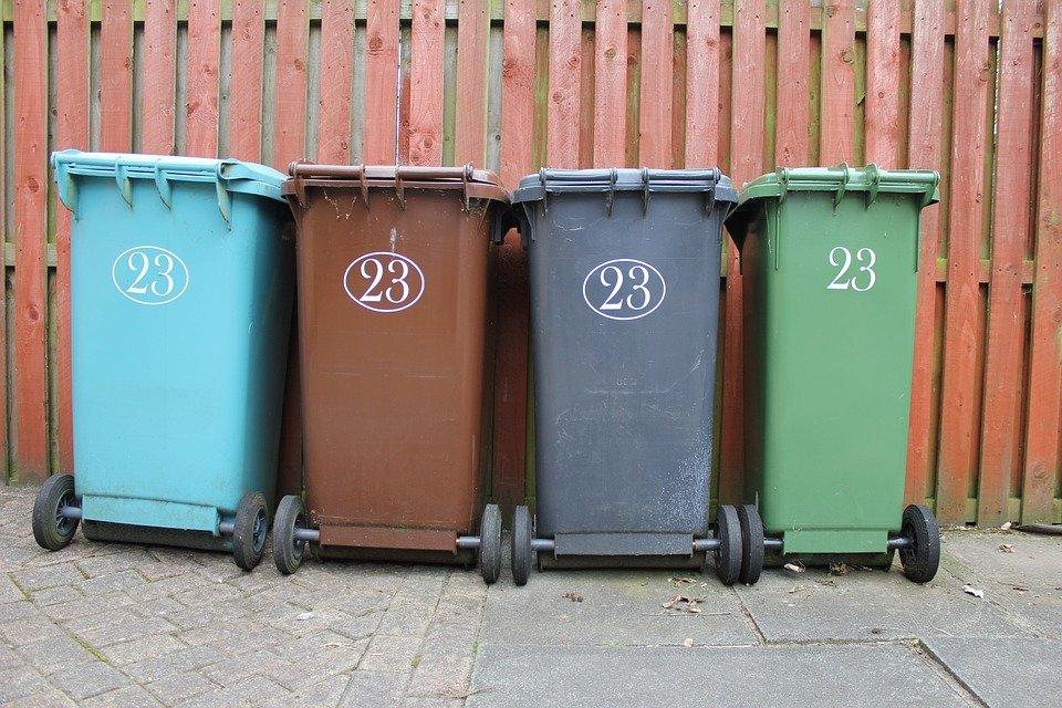 «Тема экологии всегда актуальна»: член ОНФ о призыве Путина заняться проблемой мусора в РФ