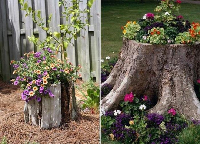 Декорированный горшок в саду из обычного пня, который просто и лаконично оформлен и преобразил двор.