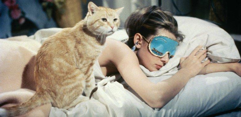 Картинки по запроÑу breakfast at tiffany cat