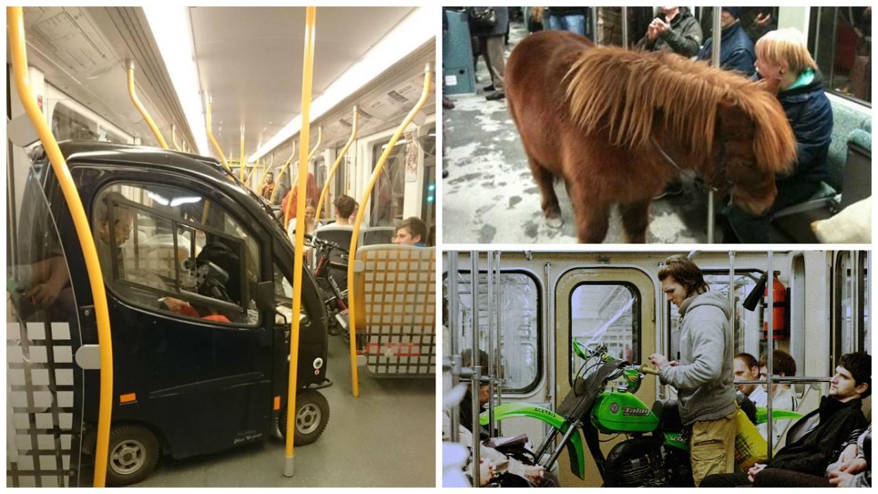 25 странных вещей, которые люди перевозят в метро (26 фото)