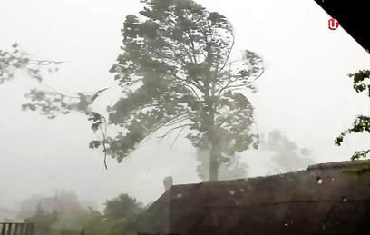Во время урагана в Псковской области погиб ребенок