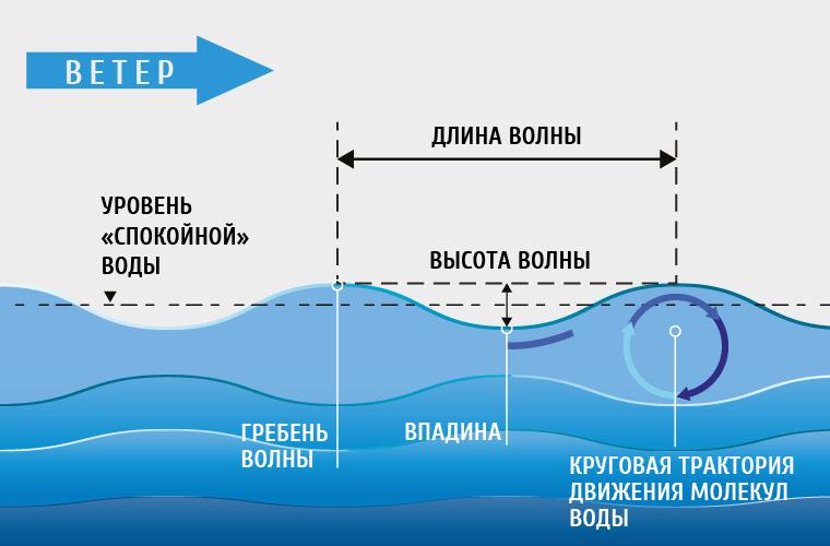 Откуда берутся волны в океане?