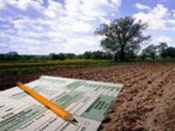 Господин Кадастр. Оценкой земельных участков, зданий и квартир займется государство