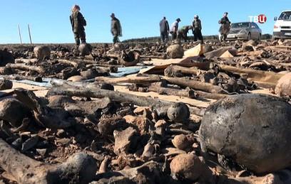 В Латвии поисковики нашли останки 145 погибших красноармейцев