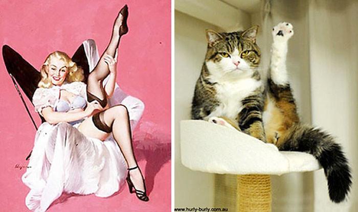 Котики, которые позируют точь-в-точь как модели в стиле пин-ап (48 фото)