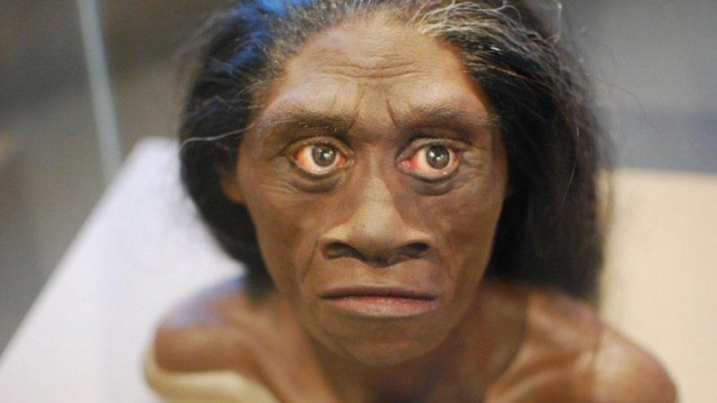 Почти два миллиона лет, вплоть до VIII тысячелетия до н. э. на Земле жили сразу несколько видов людей. Но в итоге Homo Sapiens просто истребил всех остальных древние люди, история, факты, человечество