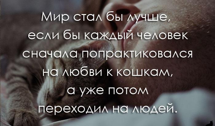 umnyie-frazyi-i-tsitatyi-so-smyislom