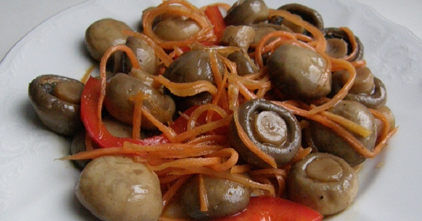 Рецепты моркови по-корейски с грибами в домашних условиях