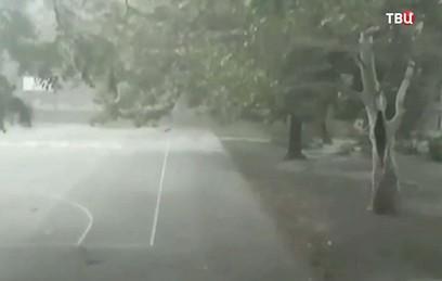 """Жертвами урагана """"Герварт"""" в Европе стали шесть человек"""