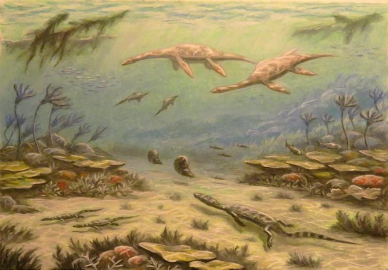 Нотозавры первыми из крупных…