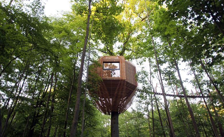 Домик на дереве в виде птичьего гнезда