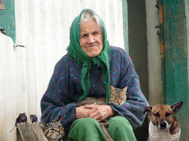 Тётя Бася: простой и добрый рассказ