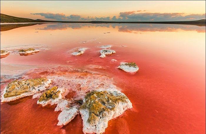 Необычный пейзаж залива Сиваш. Фото: Сергей Анашкевич.