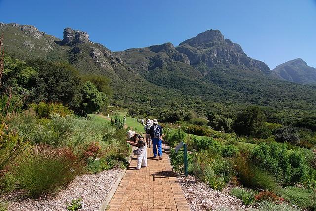 Ботанический сад Кирстенбош, ЮАР