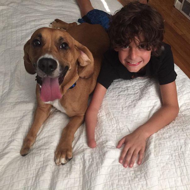 Собака – это тоже ребенок и член семьи. Самые милые фото!