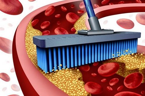 Янтарная кислота: защита сердца и сосудов