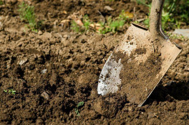 перекапывать землю лопатой