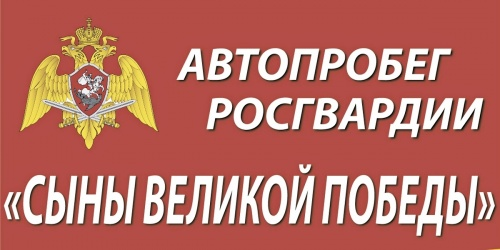 Автопробег Росгвардии «Вахта…
