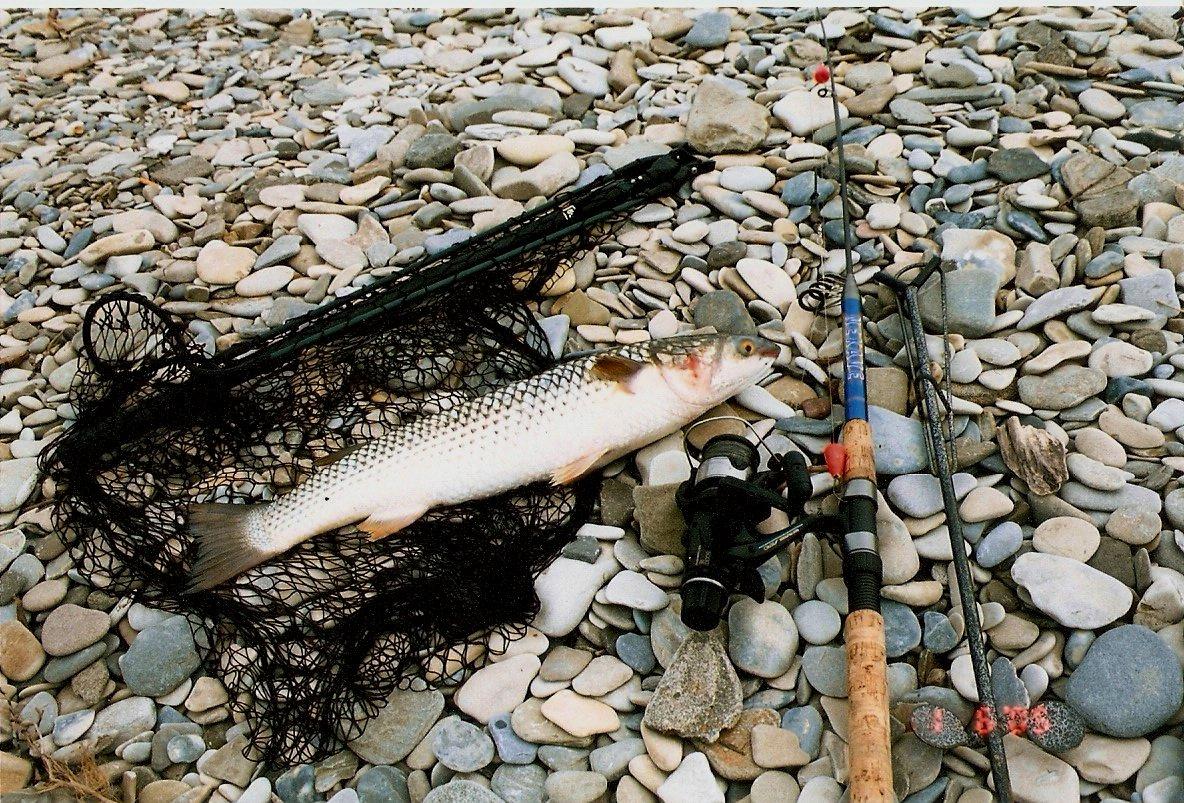 дивноморское рыбалка на море