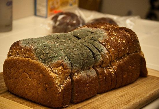 То, что они рассказали о хлебе, заставило меня пересмотреть отношение к этому продукту!