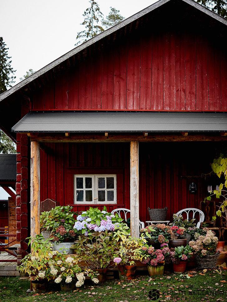 Уютный и стильный деревенски…