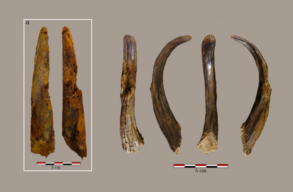 В Испании нашли инструменты возрастом 90 000 лет