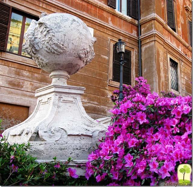 Испанская лестница в Риме - 138 ступеней восторга - 6