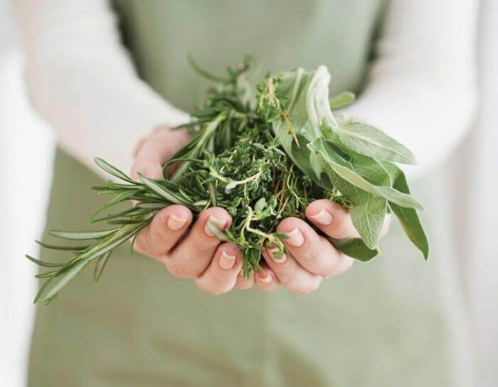 Гормональный фон:  Лучшие травы для женщин