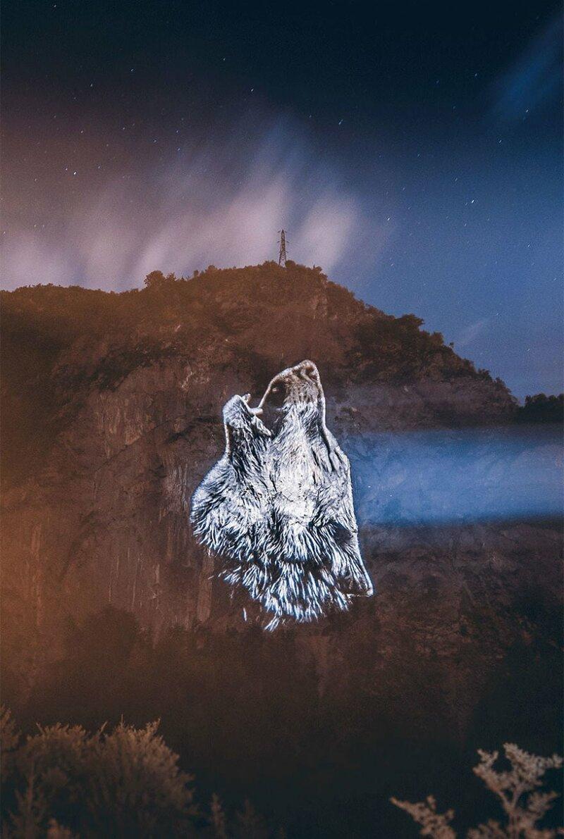 Художник спроецировал свои рисунки на горы, чтобы привлечь внимание к проблеме исчезновения животных