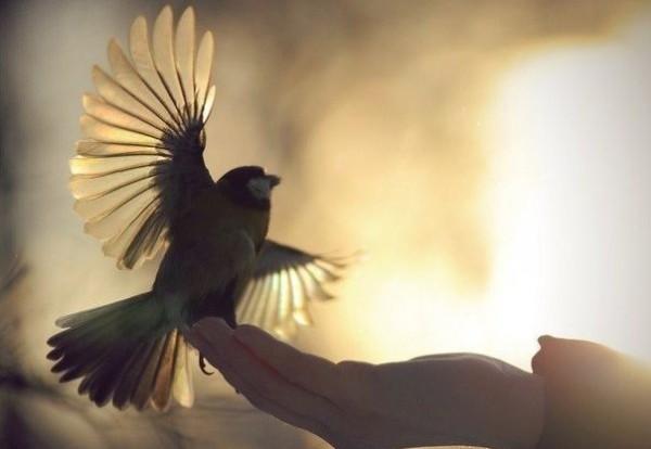 5 шагов к прощению – если не можешь себя заставить простить…