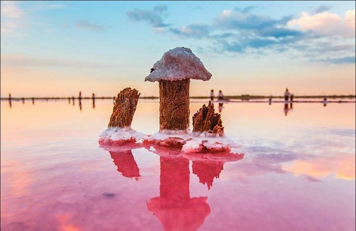 Летом количество воды в заливе увеличивается, и соответственно - количество соли. Фото: Сергей Анашкевич.