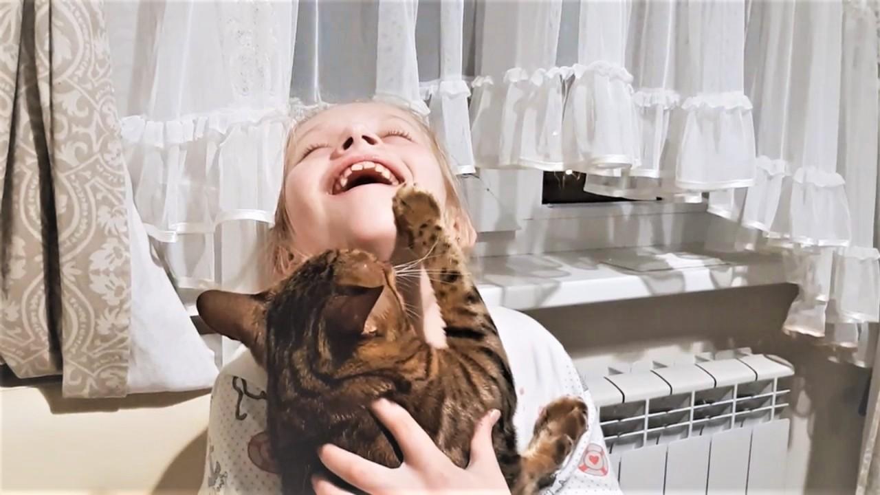 Смешные и милые видео с живо…