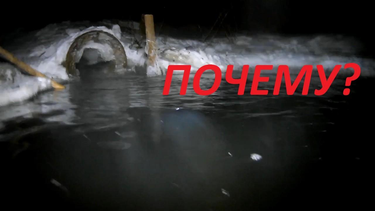 Рыба ГОРИТ ЗИМОЙ! ЖЕСТЬ! Подводная съемка ночью