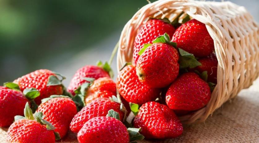 Вот приносите вы домой полную корзину ягод, а на следующий день, или хуже того вечером, большая их часть покрывается плесенью? Что же делать?