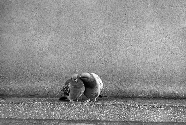 Париж. 1965. Photo: Frank Horvat было, история, фото