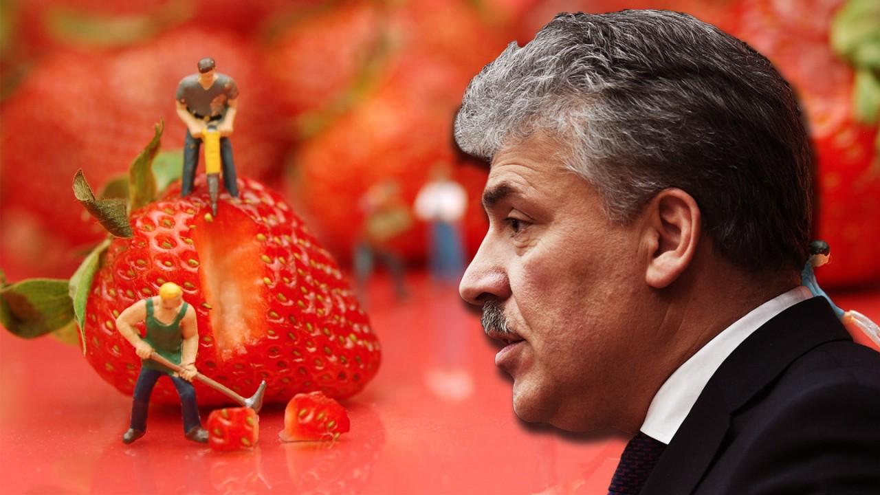 Депутат о жалобах пайщиков Совхоза имени Ленина: деятельность Грудинина напоминает «МММ»