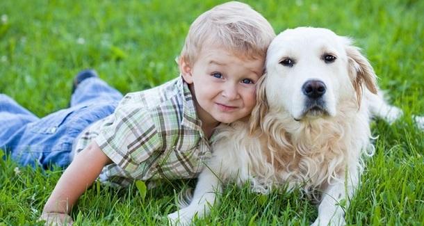 какую собаку завести для охраны в семью с маленькими детьми
