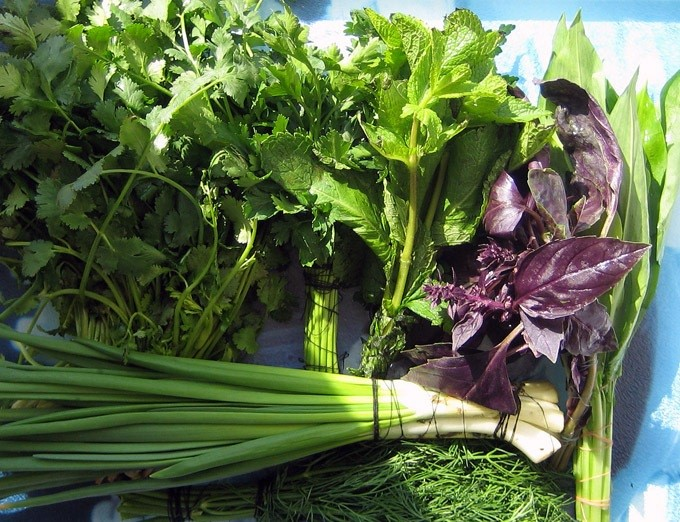 Многолетние зелёные  культуры которые дают урожай первыми