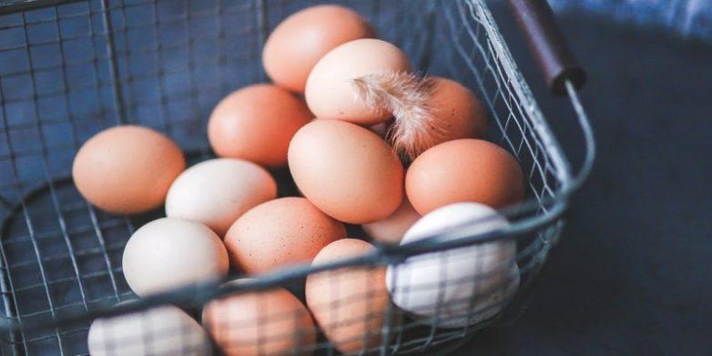 Почему ученые советуют отказаться от яиц
