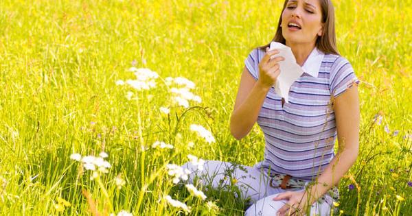 Народные методы лечения обострения аллергии