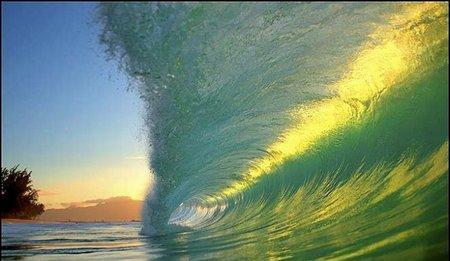Живая волна