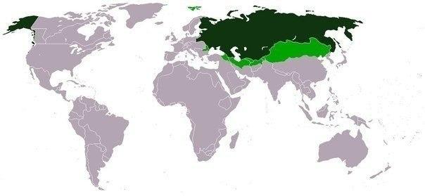Факты о Российской Империи