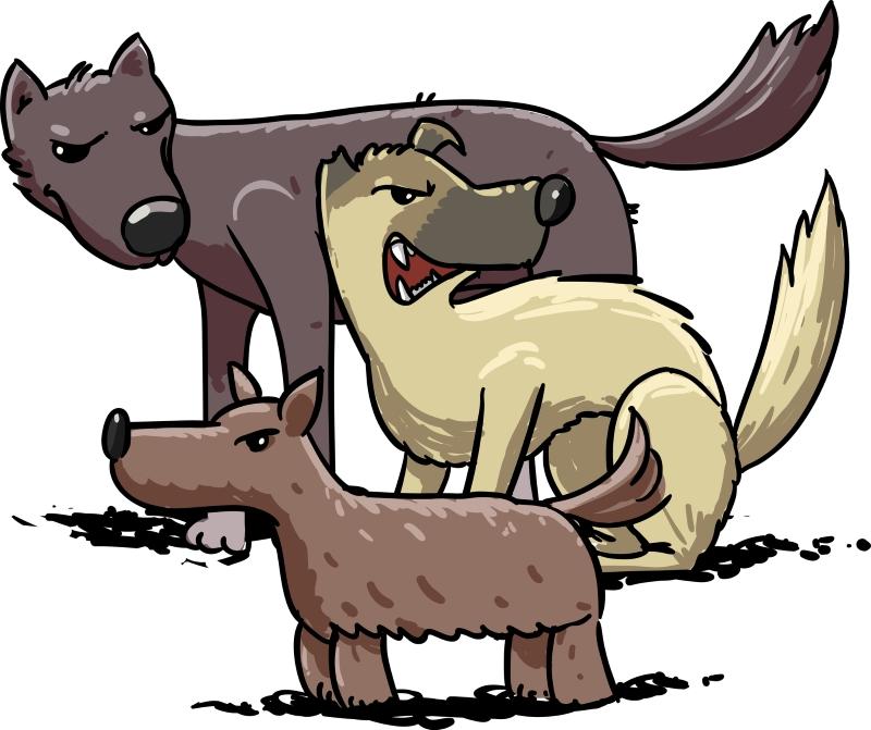безнадзорные собаки в городе